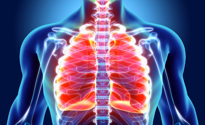 913 setembro: a ERS, o Congresso Internacional de Pneumologia