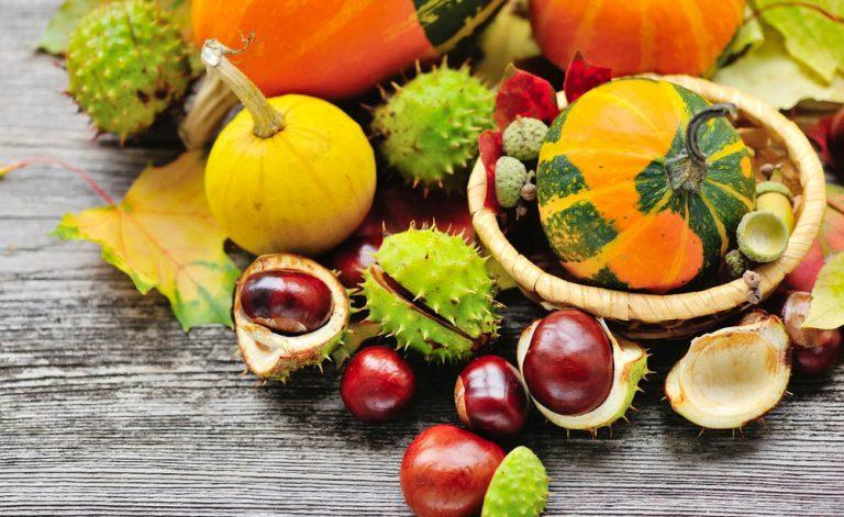 Alergias alimentares outono: o que fazer nesses casos?
